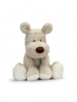 Teddy Cream beige koiranpentu | TEDDYKOMPANIET